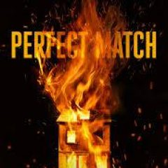 New Release Book Review: Perfect Match by D.B